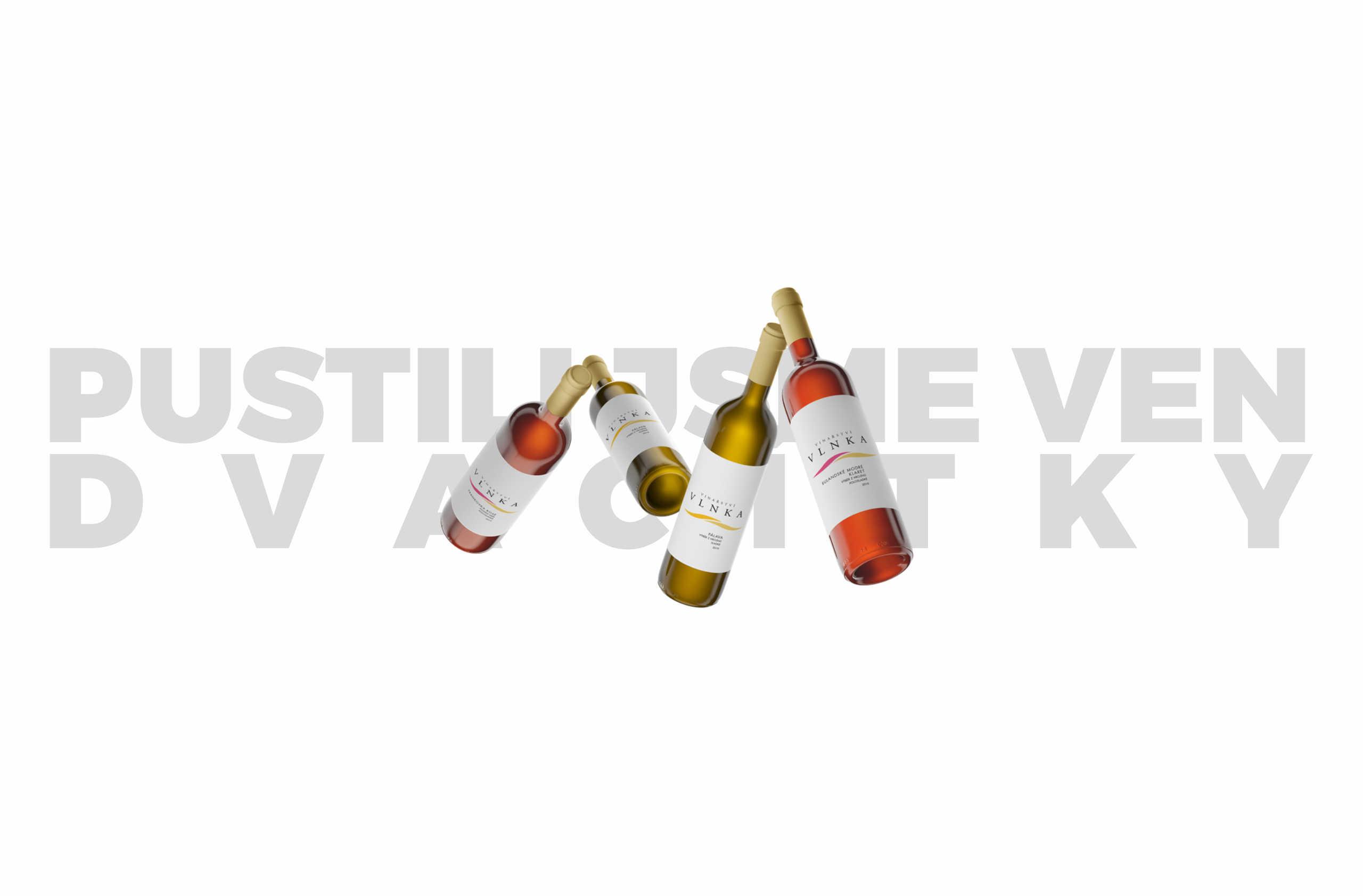 Nová vína 2019 jsou venku!